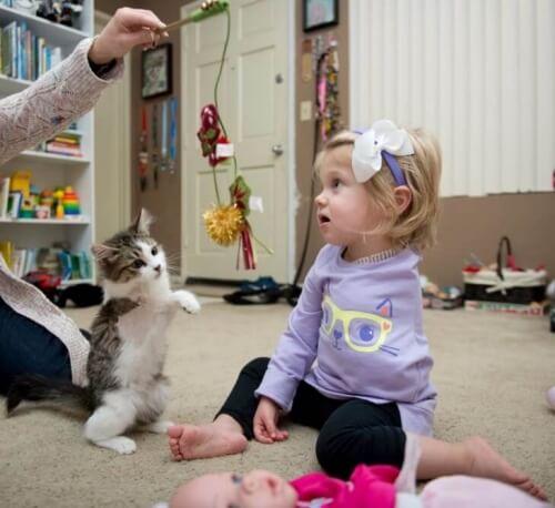 Bambina senza un braccio adotta un gattino con 3 zampe