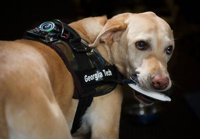giubbotto-per-comunicare-con-i-cani