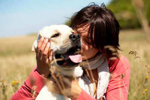 abbracci tra cane e padrone