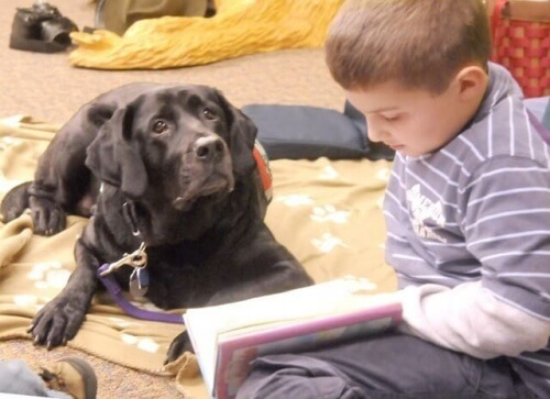 cani aiutano bambini