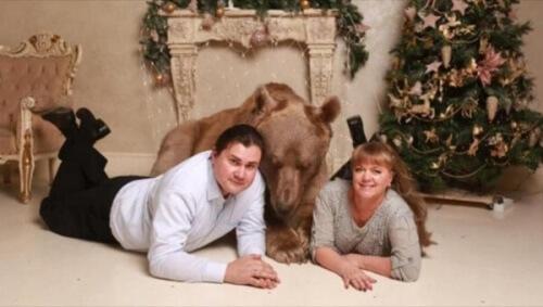 Stepan, l'orso domestico di una coppia russa