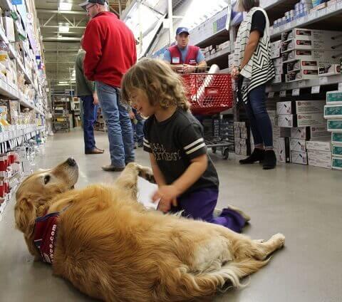 cane guida in negozio
