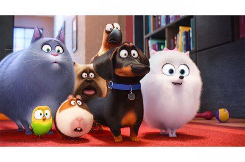 Pets - Vita da animali, un cartone animato da non perdere