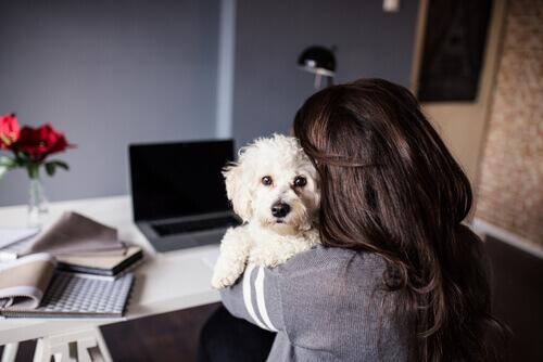 Avere un animale aiuta a ringiovanire di 10 anni