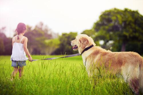 bambina-e-cane