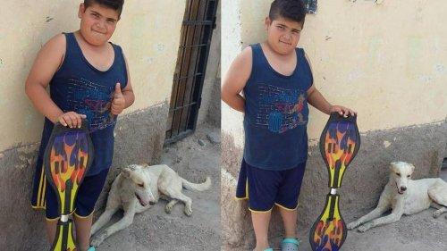 Bambino vende skateboard per comprare medicine ad un cane randagio