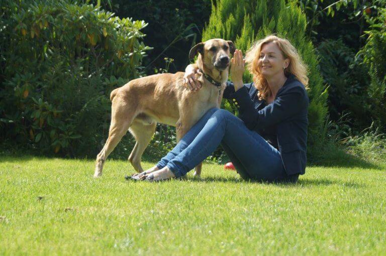 cane-randagio-adottato-da-una-hostess-tedesca