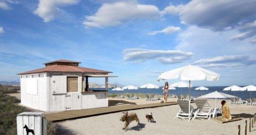 Nasce il primo chiosco per cani sulla spiaggia