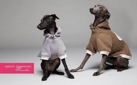 La collezione per cani di Adolfo Domínguez