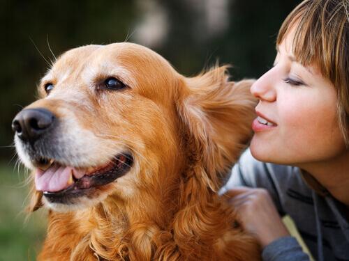 cane arancione con padrona