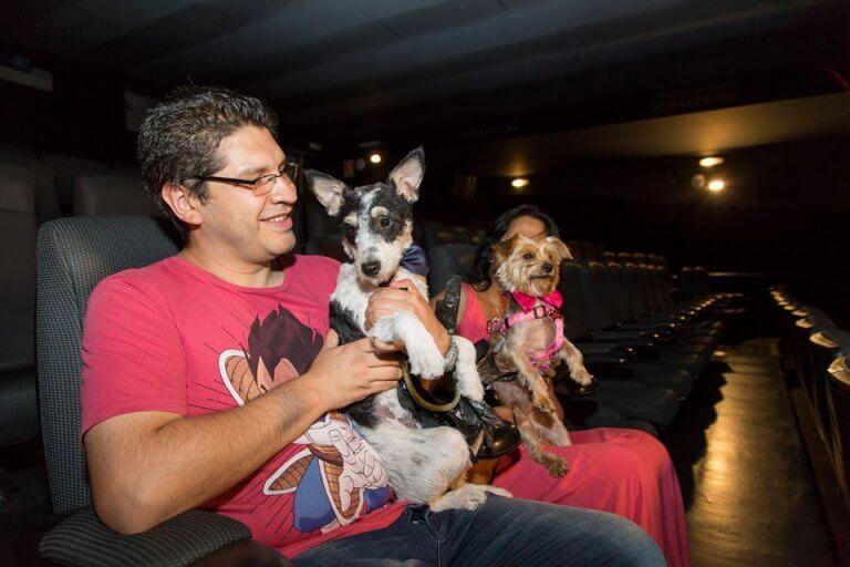 Il primo concerto musicale dedicato ai cani