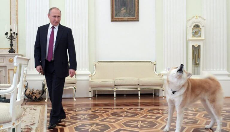 Il cane di Putin spaventa giornalisti giapponesi