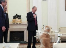 Il cane di Vladimir Putin spaventa i giornalisti giapponesi