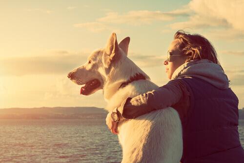 cane e padrona guardano il mare