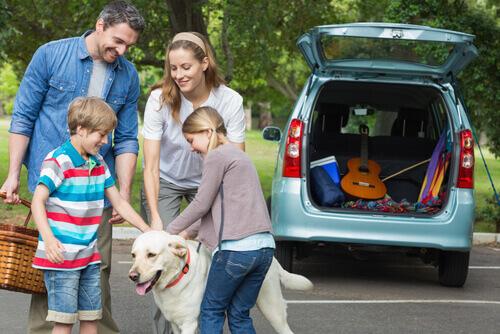 Viaggiare con il proprio cane si o no