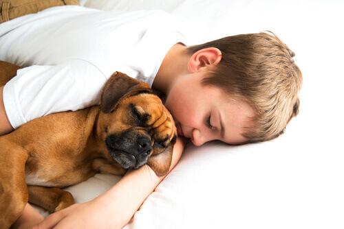 bambino-dorme-con-cane