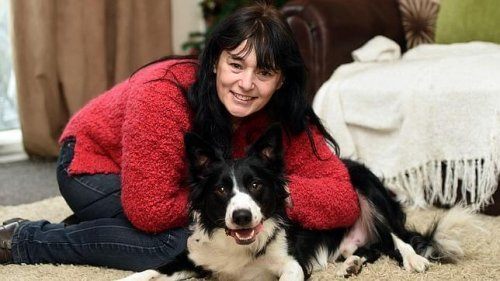 I cani aiutano a salvare le persone affetta da cancro