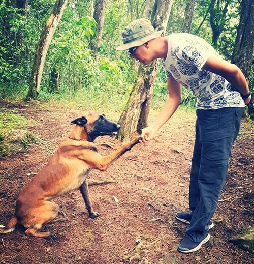 cane dà la zampa al padrone
