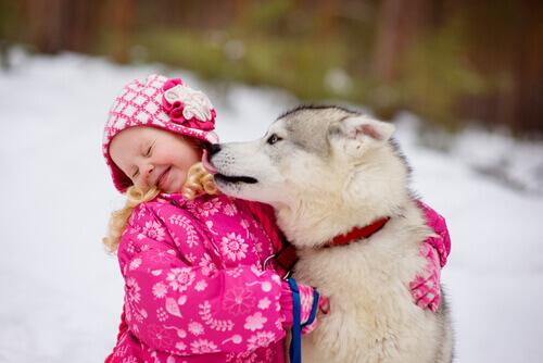 cane-lecca-bambina