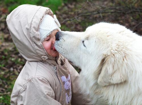 Permettere al cane di baciarci sul viso