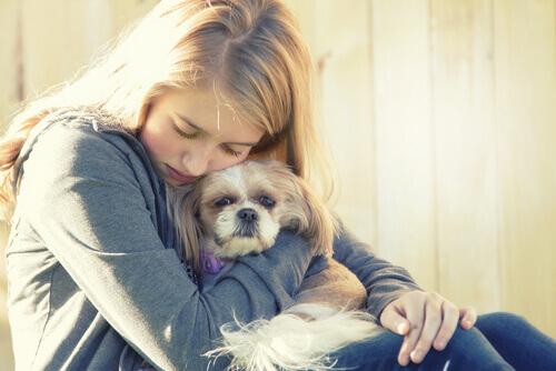 Gli animali sono la miglior cura per la depressione