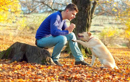 uomo-addestra-cane