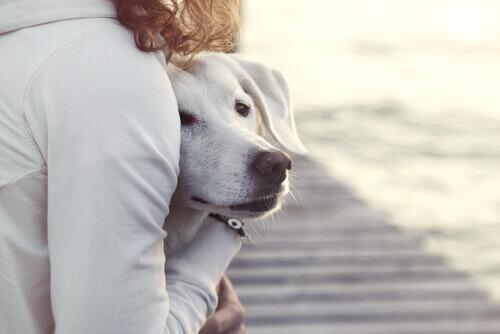 donna che abbraccia cane