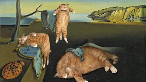opere d'arte con gatti