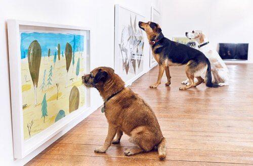 Prima mostra al mondo per cani