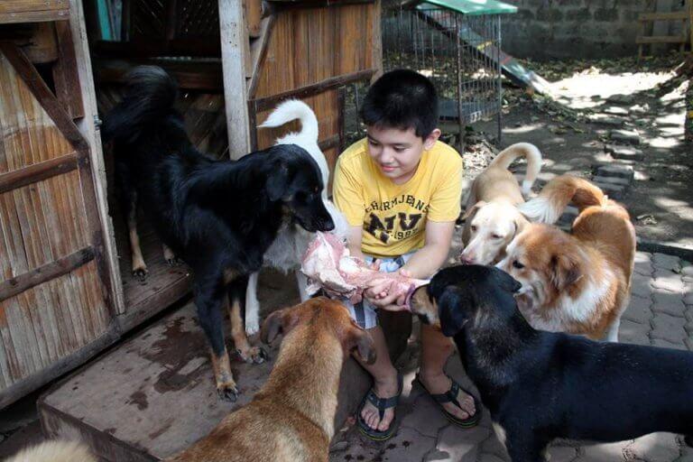 Ken, il bambino che ha creato un rifugio per animali