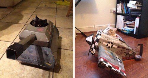 """""""Carri armati"""" e """"aerei"""": soluzioni divertenti per gatti"""