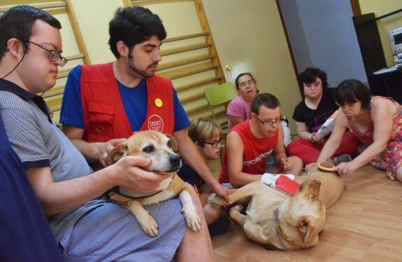 Cane salva un bambino con sindrome di Down