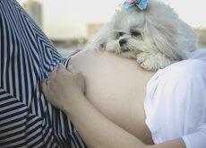 Cani e neonati, come preparare l'arrivo di un bebè