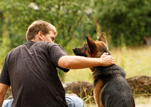 Come tenere tranquillo il vostro cane