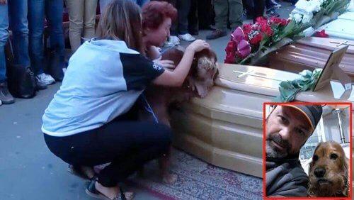 Cane si rifiuta di abbandonare la bara del suo padrone, vittima del terremoto