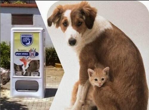 In Spagna nasce il primo distributore automatico di cibo per animali