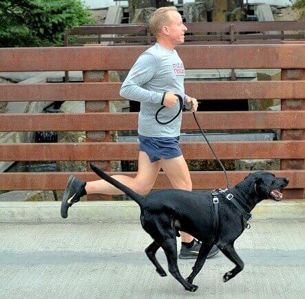 cane ha salvato padrone obeso