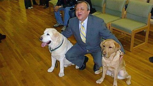 Il cane guida che ha salvato il suo padrone l'11 settembre
