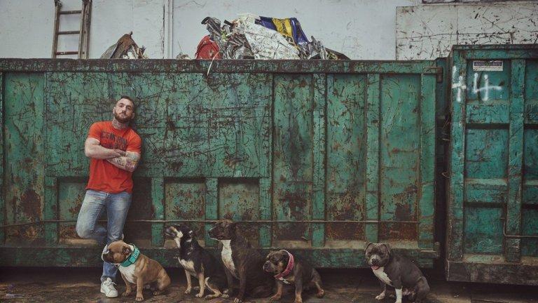 Un programma TV racconta il maltrattamento di animali