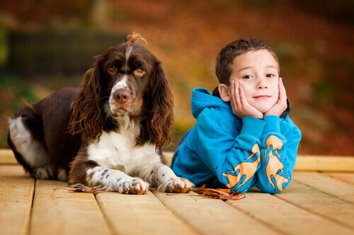 Cani che vanno a lezione e aiutano i bambini