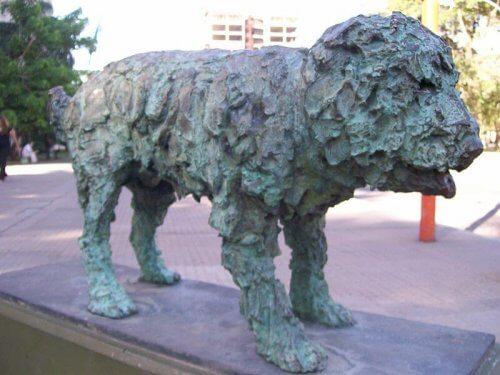 Fernando, il cane randagio cantato da Alberto Cortez