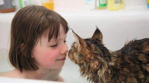 Il rapporto di una bimba autistica con il suo gatto
