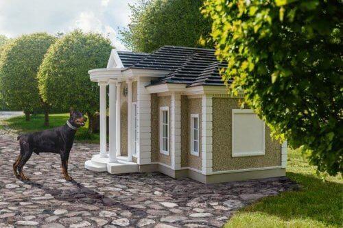 Cucce di lusso per cani, come sono e quanto costano