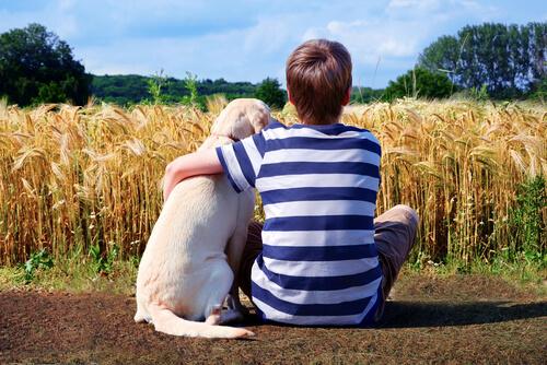 Bambino e cane in campagna