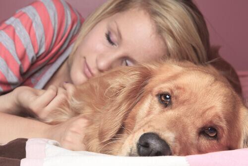 Dormire con i nostri animali: pro e contro