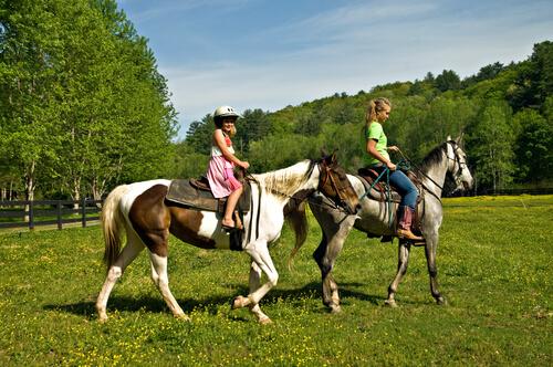 bambine in groppa a cavalli sul prato