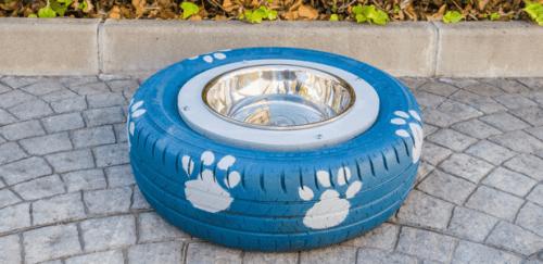 Come costruire un abbeveratoio per cani fatto in casa