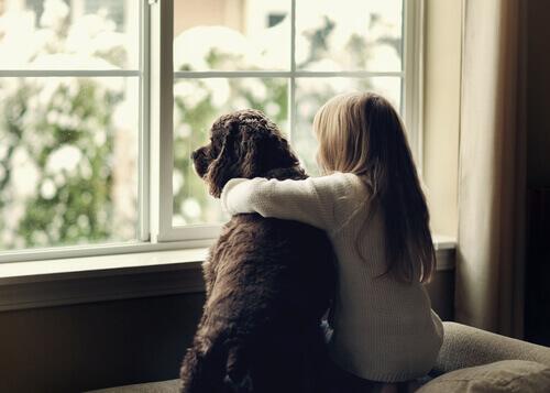bambina che abbraccia cane davanti alla finestra