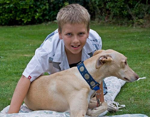 Convivenza tra animali e bambini: benefici