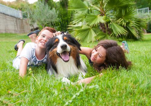 Un cane per i vostri figli: meglio piccolo o grande?